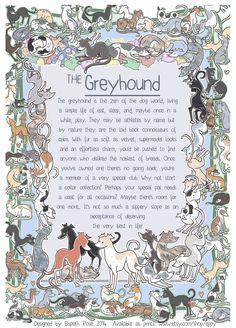 The Greyhound  6x8 Info Print by Eppy on Etsy, £5.00