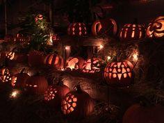 Design pumpkins are the best! Pumpkin House, Pumpkin Carving, Pumpkins, The Best, Design, Pumpkin Carvings, Pumpkin, Squash