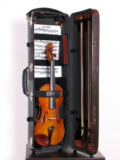 Audubon Strings, LLC - Accord Oblong Violin Case (Ultralight), $1,195.00 (http://www.audubonstrings.com/Accord-Oblong-Violin-Case-Ultralight)