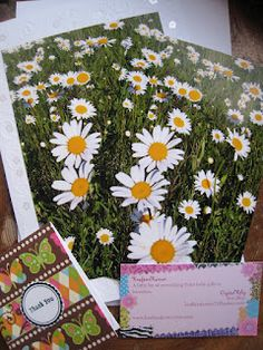 Krafters Korners, http://www.etsy.com/listing/100725734/floral-photo-card-field-of-daisies-white