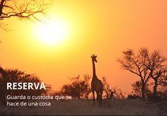 Spanish Word of the Day: RESERVA #Spanish #LearnSpanish   http://www.donquijote.org/spanish-word-of-the-day/word/reserva