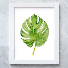 Palm leaf print tropical leaf watercolor by illustrationsthings leaf wall a Style Tropical, Tropical Decor, Tropical Bathroom, Leaf Wall Art, Leaf Art, Watercolor Leaves, Watercolor Print, Tropical Leaves, Tropical Flowers