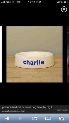 Charlie's bowl