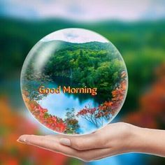Gd Morning, Good Morning Happy, Good Morning Picture, Good Morning Friends, Morning Pictures, Good Morning Wishes, Good Morning Images, Good Day, Coffee Flower