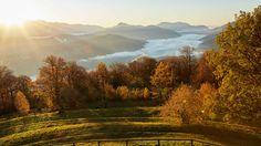 Switzerland, Vineyard, Mountains, Nature, Travel, Outdoor, Outdoors, Naturaleza, Viajes