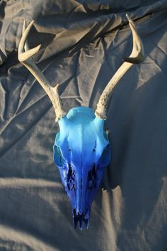Blue Hombre Deer Skull European Handpainted Airbrush by DavisFarms, $119.95