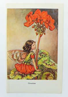 This gorgeous picture of the Geranium Fairy by Cicely Mary Barker would make a lovely gift and would look perfect in a playroom or nursery. £4.50