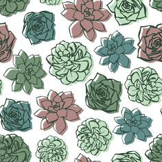 colorful succulent fabric by nespola_designs on Spoonflower - custom fabric Succulents Wallpaper, Succulents Drawing, Plant Wallpaper, Wallpaper Art, Colorful Succulents, Succulent Tattoo, Art Logo, Line Art, Spoonflower