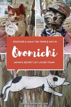 Onomichi is a scenic seaport located in Hiroshima prefecture, Japan, with more than 30 temples and shrines. And if you love cats, you have to visit it.