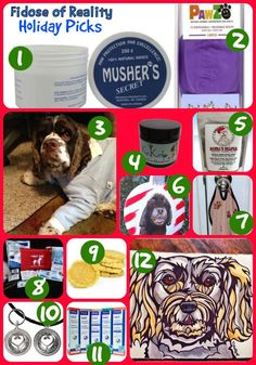 Dog Gifts for Dogs Who Have Everything - Fidose of Reality