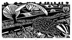 Carrie Akroyd Badger and Owl