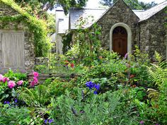 The cottage garden is a distinct style of garden that uses an informal design, traditional materials, dense plantings, and a mixture of ornamental and edible plants. English in origin, the cottage garden depends on grace and charm rather than grandeur and formal structure. - By Linda Hartong