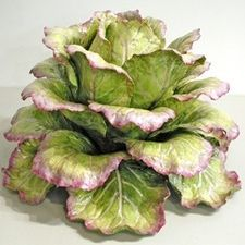 Pink and Green Large Cabbage - Katherine Houston Porcelain