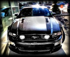 """SOLD!! Kentwood Kustoms 2014 #Ford #Mustang GT! Black is back and it's sexier than ever here at Kentwood Ford! Here's an up close look at this gorgeous tricked out 2014 Ford Mustang GT that received our Kentwood Kustoms stamp of approval! Modifications include: - Roush Supercharger Stage One - Magna Flow Exhaust - 19"""" Motegi Wheels - Matt Black Hood Stripe and Chin Spoiler - Rear Window Louvre - Window Tint - Side Window Louvres - Side Body Louvres - Rear Lowering Kit"""