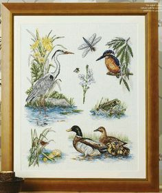 Cross Stitch Gold -Issue 101 - March 2013. River Wildlife; [Stitch Count = 293h x 236w];[Design Area on 16/32 count = 46.5x37.5cm]; Riverbank; Wildlife; Reeds; Lilly; Flowers; Insects; Dragonfly; Butterfly; Bee; Birds; Kingfisher; Duck and ducklings; Frog.