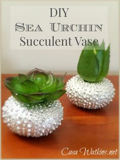 DIY Sea Urchin Succulent Vase made with vase fillers. Check out another project using the same vase filler on the blog.