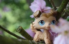 Littlest pet shop picture (c) lpsbumbabumbic