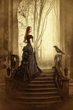 Gothic art - Victorian gothic black wedding dress ideas : Gothic Tales II von Der Brownz - reloaded