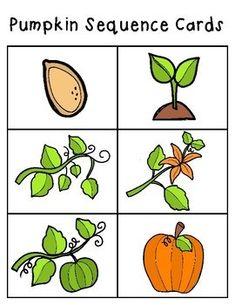 Pumpkin Life Cycle Printable Packet - Mamas Learning Corner