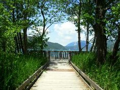 WheelTravelBlog - Nature Walk at Lake Annecy, French Alps