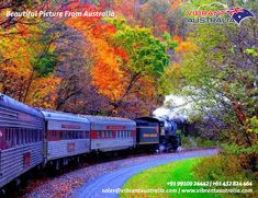 New England Fall Foliage Trains – Scenic Views Without The Traffic Hogwarts, Trains, Australia Honeymoon, New England Fall Foliage, Shiatsu, Australia Tours, Autumn Scenery, Autumn Photography