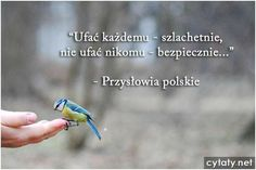 Motto, Sentences, Thoughts, Humor, Words, Quotes, Polish, Good Morning, Night