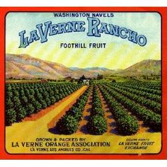 La Verne Lordsburg Rancho Orange Citrus Fruit Crate Box Label Art Print