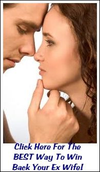 How To Win Back Your Ex-Wife - http://www.relationshipguide-101.com/how-to-win-back-your-ex-wife