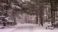 9. Medford, New Jersey mid-snowfall.16 Beautiful Shots Of Snowy Days In New Jersey