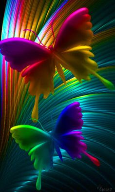 Rainbow colored butterflies, so pretty.