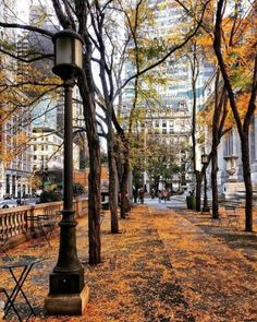 Autumn Aesthetic, City Aesthetic, Soho, Voyager Seul, Voyage New York, Autumn In New York, Nyc Fall, Voyage Europe, Autumn Photography