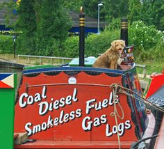 Dog On Canal Boat