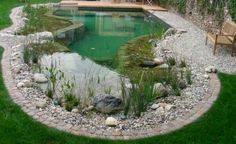 natural swimming pond - Google Search