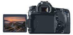 8 Essential DSLR Photography Tips for Beginners - カメラアクセサリー & 電話アクセサリー 2020 Dslr Photography Tips, Photography Tips For Beginners, Photography Lessons, Wildlife Photography, Straight Photography, Improve Photography, Photoshop Photography, Photography Tutorials, Digital Photography
