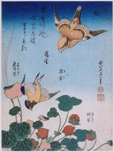 Swallow and begonia and strawberry pie  - Katsushika Hokusai