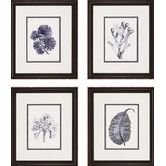 Found it at Wayfair - Indigo Kelp by Unknown Waterfront Art (Set of 4) - 21 x 18