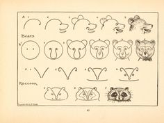 Vintage, Bears & Raccoon - What to draw and how to draw it on We Heart It What To Draw, Learn To Draw, Drawing Lessons, Drawing Techniques, Doodle Drawings, Step By Step Drawing, Art Tutorials, Drawing Tutorials, Art Sketches