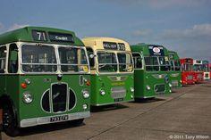 A selection of single decker bus