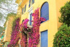 Badestrand Monterosso an der ligurischen Küste von Italien Cinque Terre, Strand, Italy, Landscape, Vacation