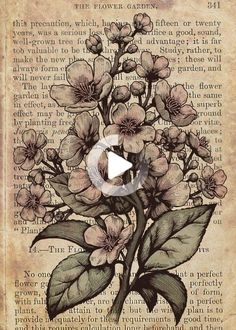 See amazing artworks of Displate artists printed on metal. Easy mounting, no power tools needed. #illustration Vintage Newspaper, Vintage Paper, Tree Illustration, Botanical Illustration, Book Page Art, Book Art, Blossom Trees, Cherry Blossom, Theme Tattoo