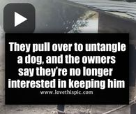 They pull over to untangle a dog, and the owners say they're no longer interested in keeping him