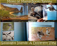 Galapagos Islands Book Review