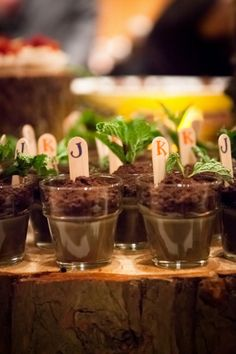 Plant Favors for guest.  A gift that will keep on growing.