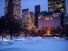 Winter Evening in Central Park by lhongchou's photography, via Flickr
