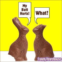 This joke never gets old. Made from yummy chocolate bunnies!  These yummy bunnies, to be precise: http://www.candywarehouse.com/products/solid-foiled-milk-chocolate-12-ounce-easter-bunny/?utm_source=Pinterest&utm_medium=Social&utm_campaign=EasterBunny (We also have the rest of the Easter candy you know you need to get before it's too late!)