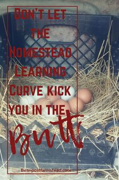 Homesteading can be