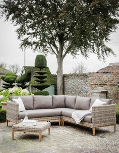 Buy Garden Trading Walderton Corner Sofa Set PE Rattan Aluminium Soft Brown Cushions online with Houseology's Price Promise. Full Garden Trading collection with UK & International shipping. Outdoor Sofa Sets, Outdoor Seating, Outdoor Living, Outdoor Furniture Sets, Outdoor Sectionals, Garden Seating, Rattan Garden Corner Sofa, Garden Sofa Set, Rattan Garden Furniture