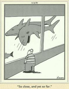 """""""The Far Side"""" by Gary Larson. Come on Billy, why not try a little swim."""