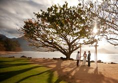 Hawaii wedding, intimate, backlit, Penny Dinn