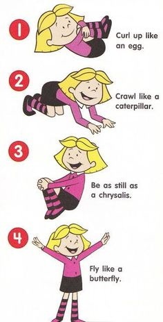 How to act out the life cycle of a butterfly